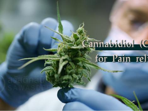 Cannabidiol as pain relief