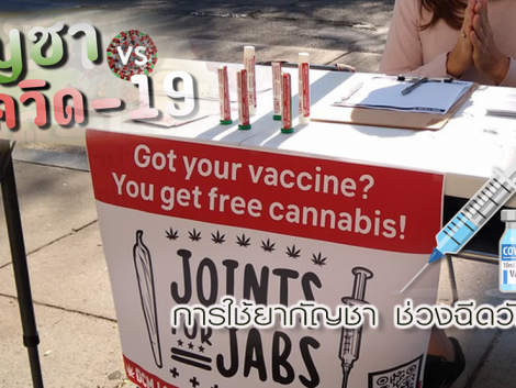 cancer, cannabinoid, cannabis clinic, cannabis in thailand, cbd, health bangkok, marijuana, medical cannabis, sawasdee clinic, thai clinic, thai herb, thai medicine, thailand cannabis, thc, cbd oil, กรุงเทพ, กัญชง, กัญชา, กัญชาการแพทย์, กัญชารักษามะเร็ง, กัญชารักษาโรค, กัญชาแก้ปวด, คลีนิก, คลีนิกกัญชา, คีโม, ซึมเศร้า, นอนไม่หลับ, น้ำมันกัญชา, ประสาท, พาร์กินสัน, มะเร็ง, มะเร็งระยะสุดท้าย, มะเร็งลำไส้, มือสั่น, ยากัญชา, สมุนไพรไทย, สวัสดีคลีนิกเวชกรรม, สุขภาพผู้หญิง, เคมีบำบัด, เครียด, แพทย์หญิงจินตนา
